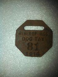 Heber Springs 1913 Dog Tax License