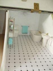 Bathroom of main house