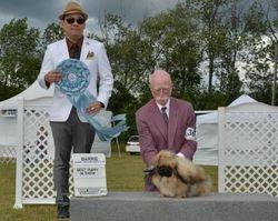 Saturday, August 3 - Best Puppy in Show
