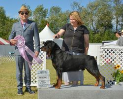 Saturday, August 3 - Reserve Best In Show