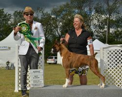 Saturday, August 3 - Best Bred By Exhibitor In Show