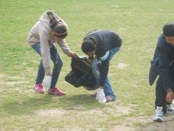 Activitate ecologizare