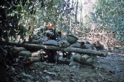 Base Camp Perimeter