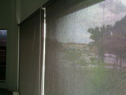Peforated Blinds