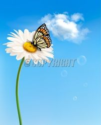 Flower with butterfly