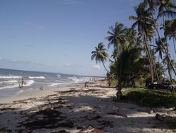 Beach in Trinidad