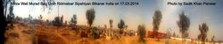 Panorama Scene of Mirza Wali Ursh 17.03.2014 at Ridmalsar Bikaner India