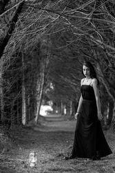 ''black beauty'' DO6 PH6 CK6