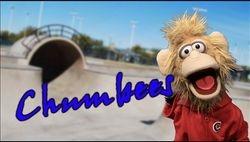 Chumbees
