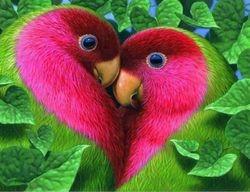Passion Fruit and Kiwi