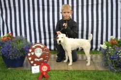 Class 17 Junior Child Handler