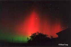 The Great Auroral Storm of March 31st, 2001