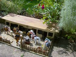 It was busy at the stables, the long summer holidays had just begun.