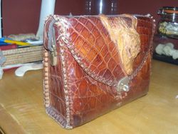 Gator Purse from 1950