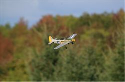 Parkzone P-51 Mustang Micro (Dave Schneck)