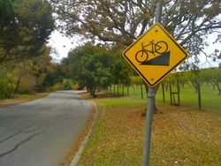 Beware of Bikes Descending