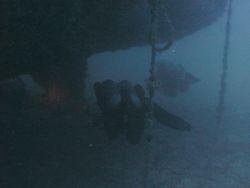 Tacoma shaft skeg