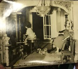 Unframed photo of the lower right rooms in the house