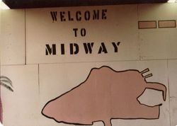 Midway 1982