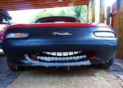 Frosty Miata Smile