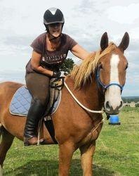 Aged 4 - Under saddle