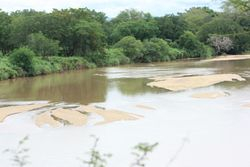 PONGOLO RIVER WITH VIEW OF MOZAMBIQUE, NDUMO