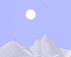My winter 2