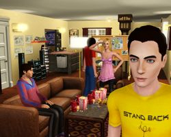 The Big Bang Theory (1)