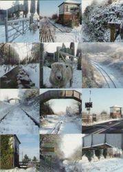 Snowy Hammerwich