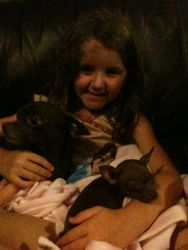 Abbi with Sancho and Chica