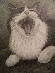 Juliet yawning