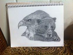 Eagle and bear