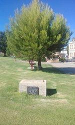 Lone Pine memorial Avoca.