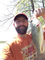 Andrews fish