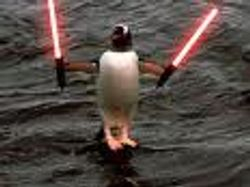 penguin sith lord