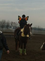 Rory and Diesel at Rory's first horse show