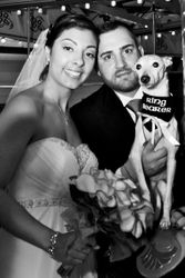 Sucec Wedding