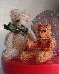 Tiny teddy gets a friend.