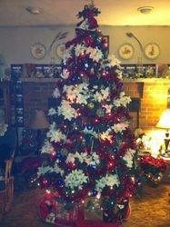 BW's Christmas Tree 2011