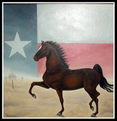 Texas, 1981