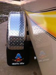 Mud Flaps (Fun & Function)