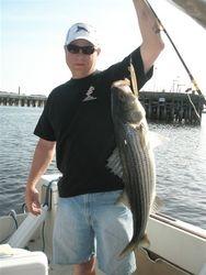 First striper of 2010