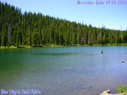 Swimming At Horseshoe Lake