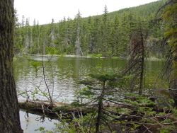 Another Olallie Hike-In Lake