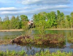 Turtle Pond View Deux