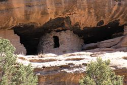 A close-up of one of the dwellings.