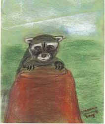 raccoon by lindann (sky)