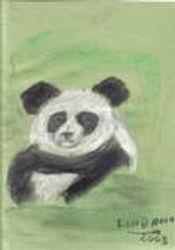 panda by lindann (sky)