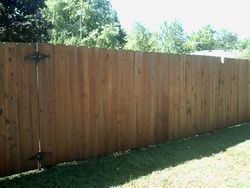 Another view of the cleaned fence