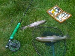 Fly Fishing Ballaghmore lakes